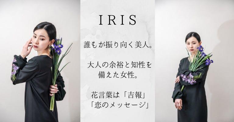 iCONOLOGY_IRIS