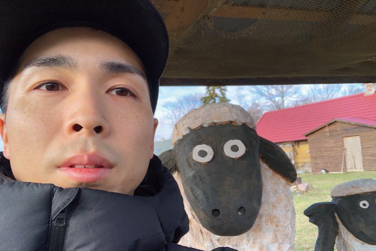 ↑エストニアの離島「キフヌ島」で出会った羊たち