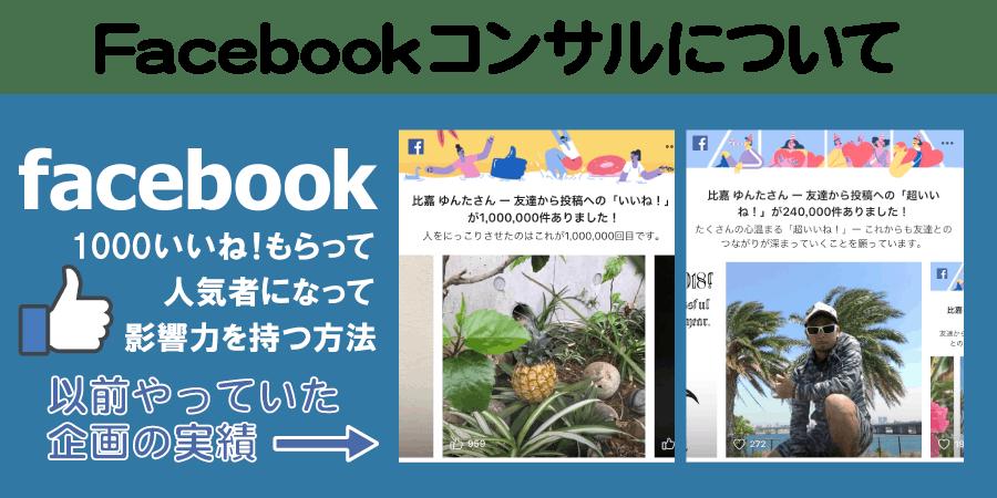 Facebookコンサルについて、以前やっていた企画の実績画像