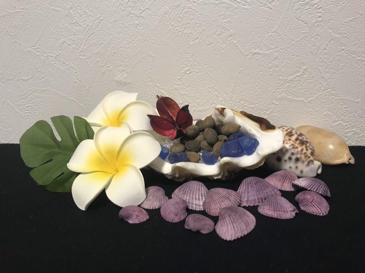 トックリヤシの種を貝殻と可愛く飾った南国っぽいインテリア画像