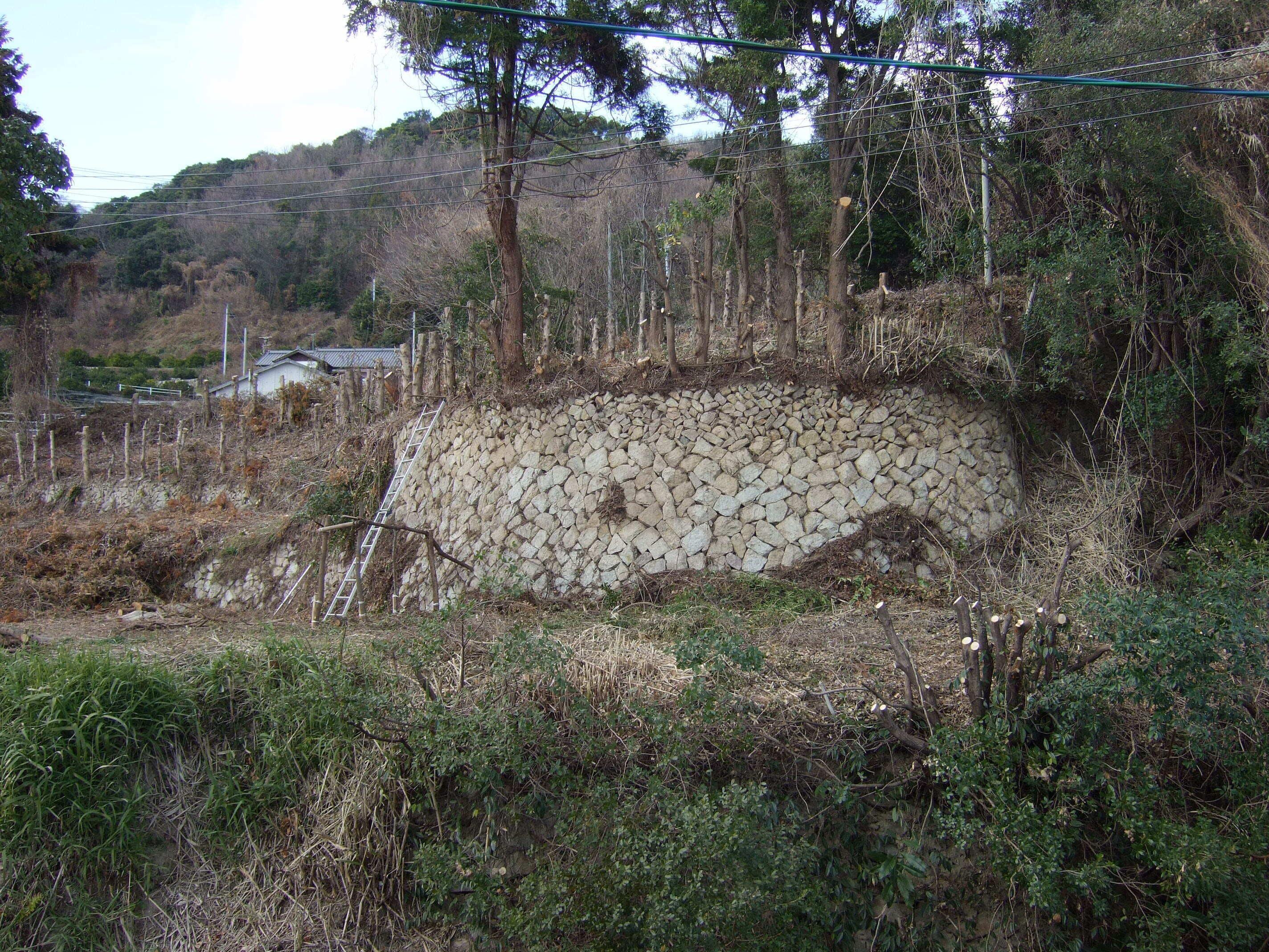 周防大島の石積み段々畑を再開墾