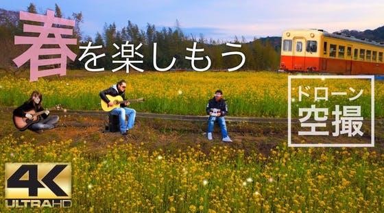 石神 菜の花 畑
