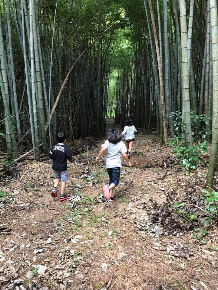 森へ走る子ども