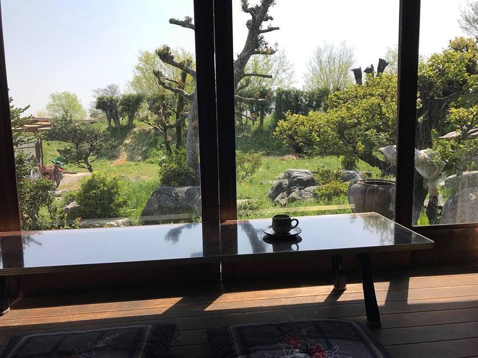 清流の宿窓からの景色