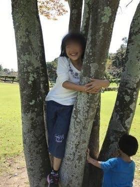 Medium 木登り桃夏