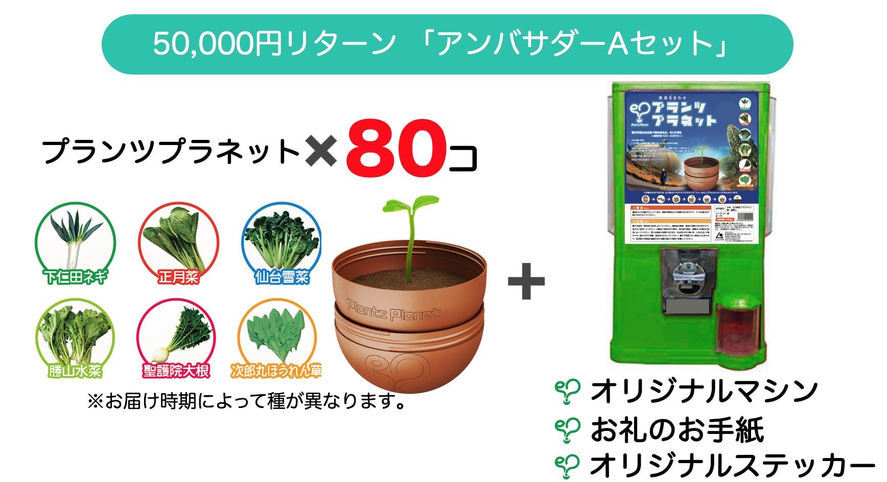 50000円リターン
