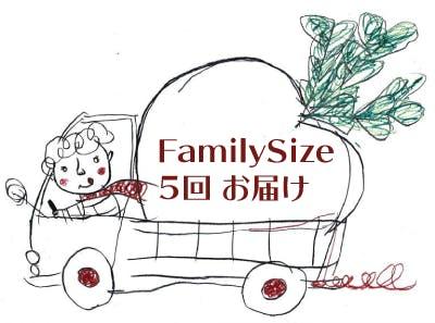 Familysize5回お届け