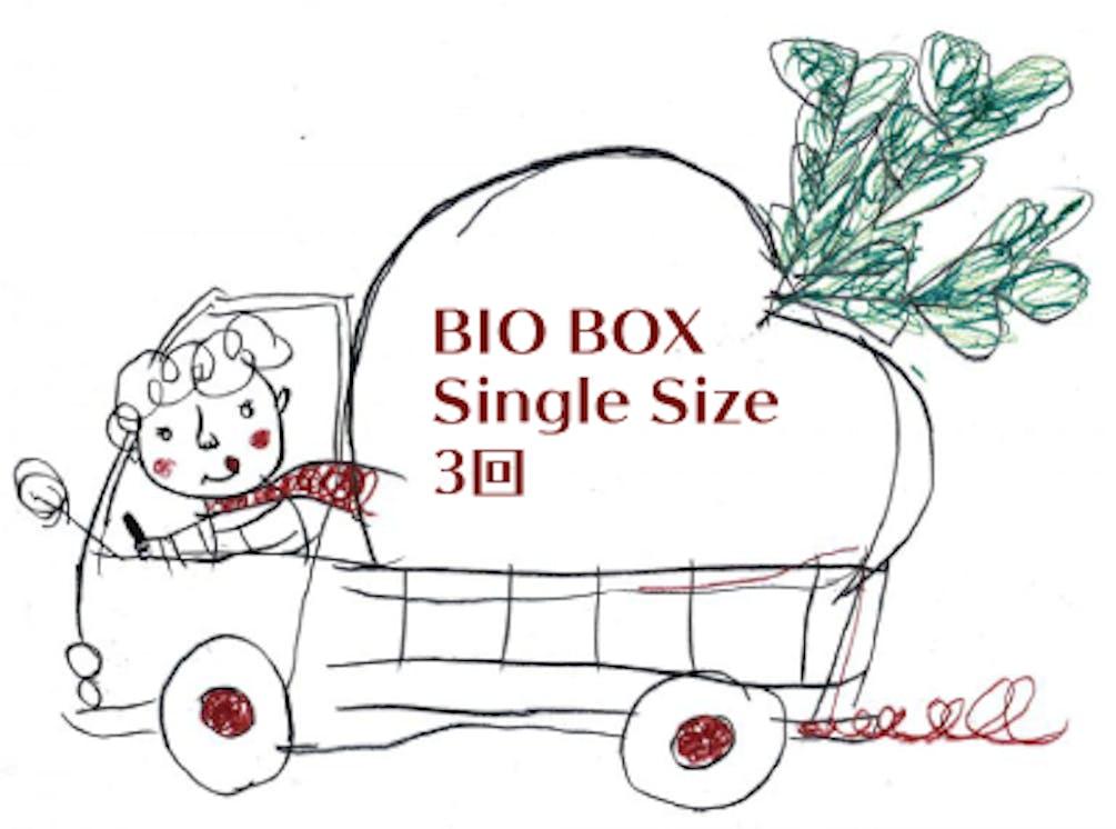 Singlesize3.png?ixlib=rails 2.1