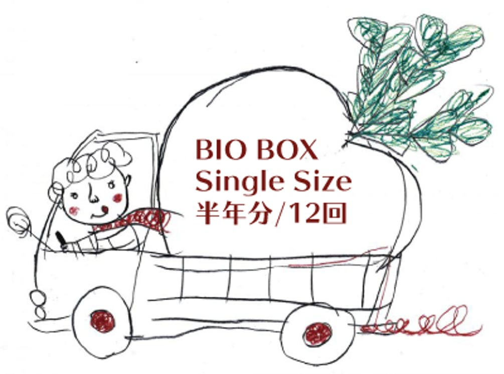 Singlesize12.png?ixlib=rails 2.1