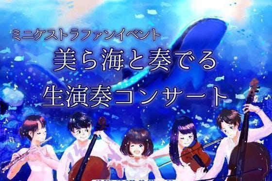 Medium minichestra chura fun event