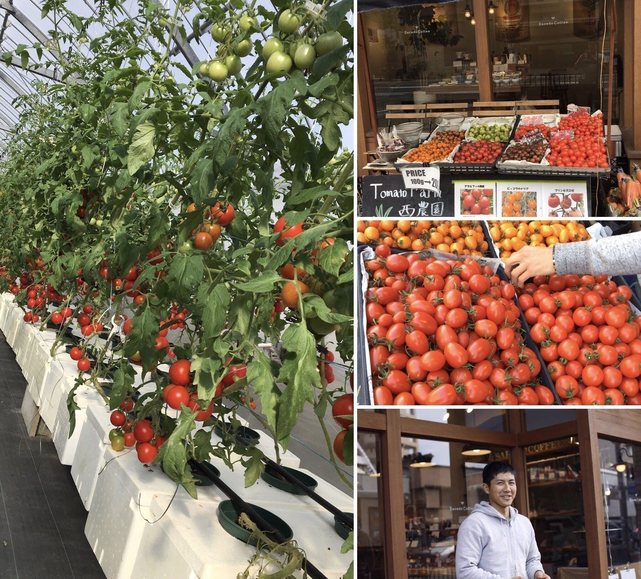 街を笑顔に  「自分でつくって、自分で売る」TomatoFarm西農園の挑戦!