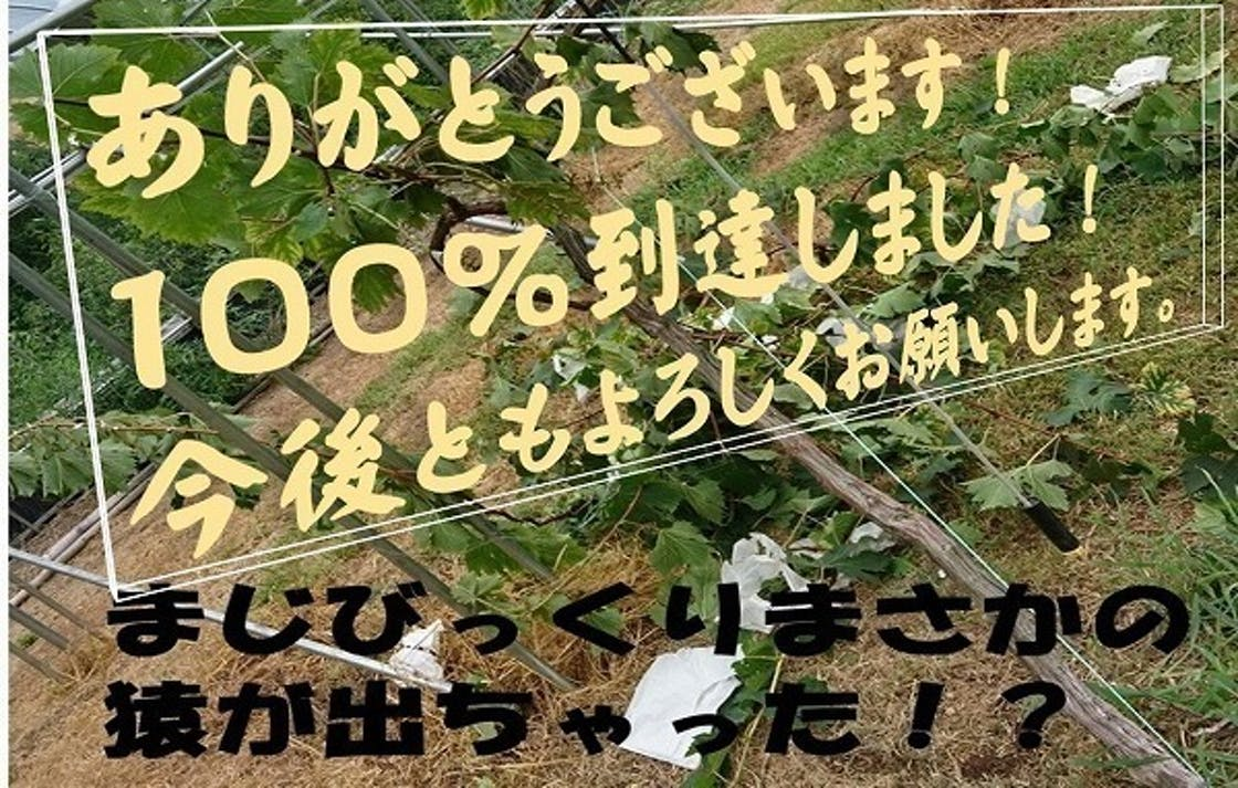 4c9777ececa3edafcabef13e47061626.jpg?ixlib=rails 2.1