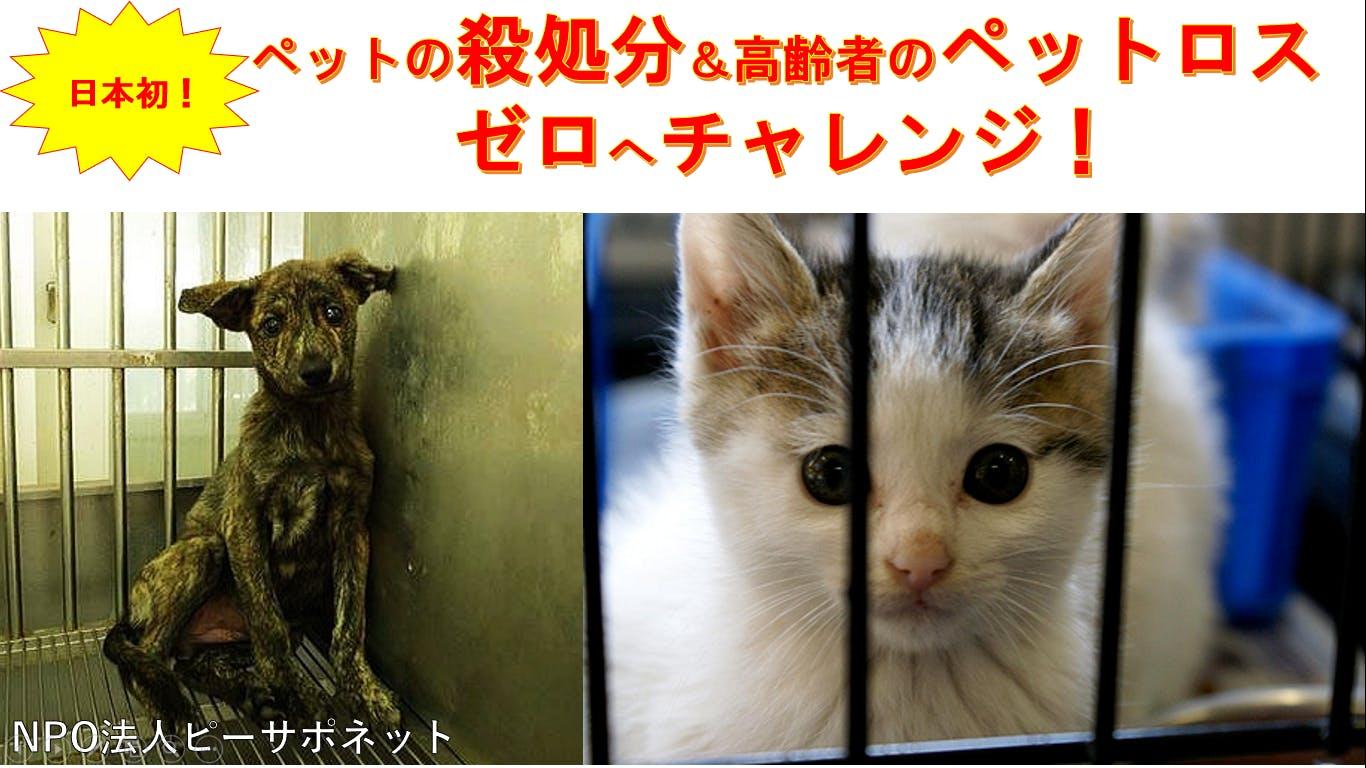 日本初!ペットの殺処分とペットロスをゼロにする仕組みを広めるサポーター募集!