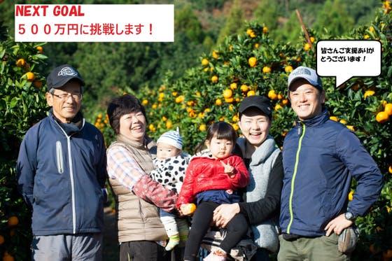 【九州長崎豪雨】被災したミカン園を復旧し、最高のミカンを今年も届けたい!