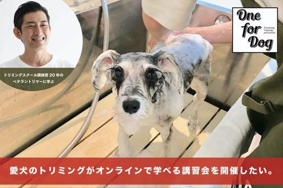 愛犬のトリミングがオンラインで学べる講習会を開催したい。