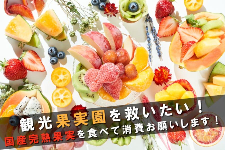 冷凍 フルーツ