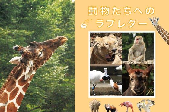 『動物たちへのラブレター』を出版します!
